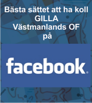 FB-VOF-Right